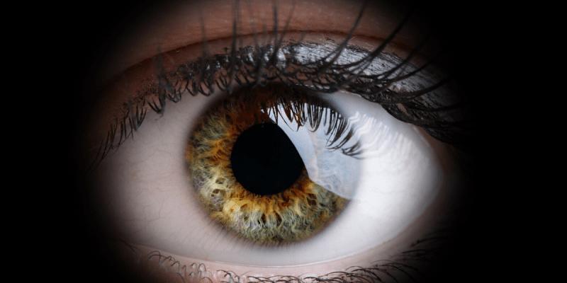 new enchroma lenses, enchroma lx, eyes on st albans